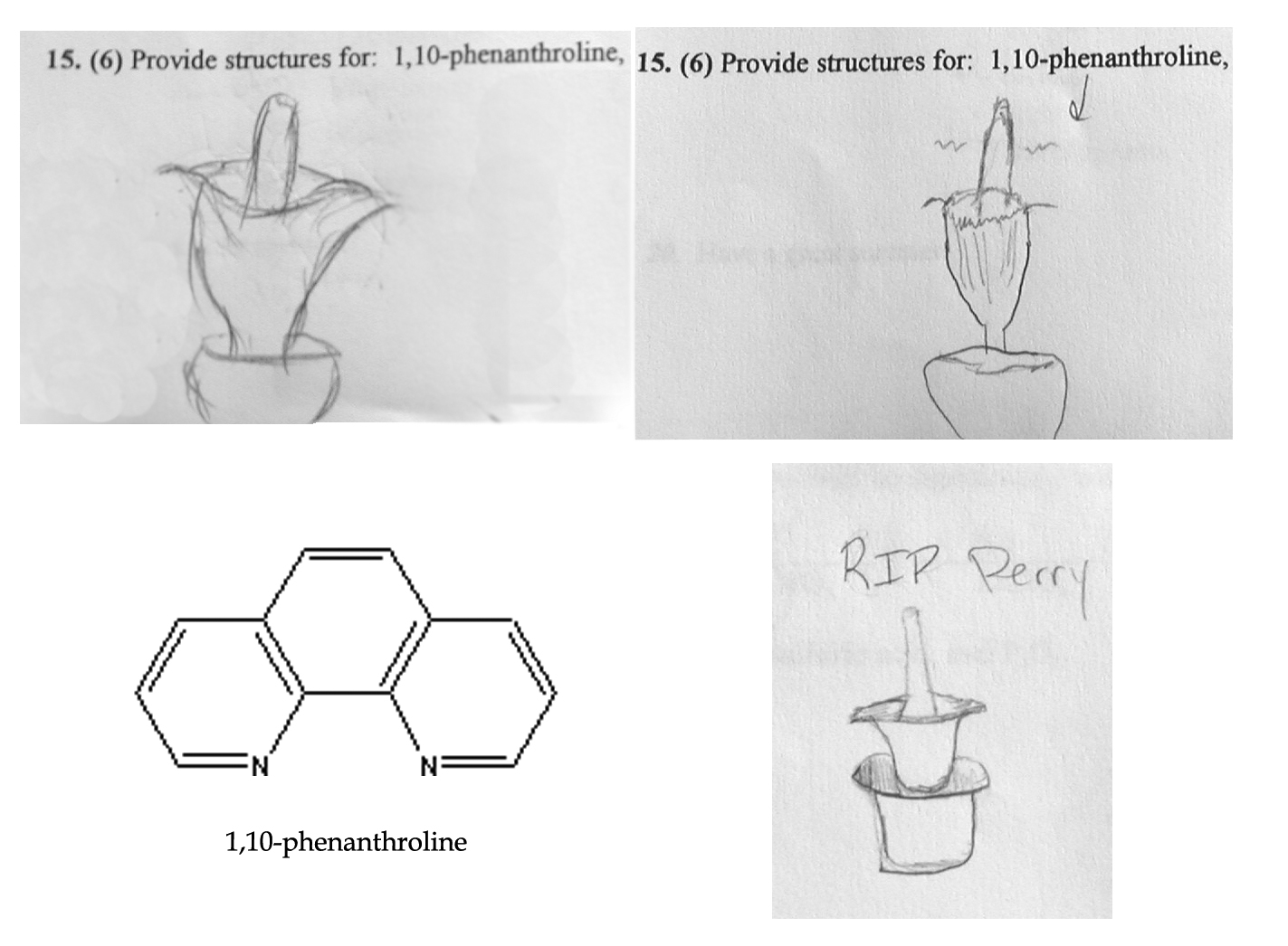 Perry Amp Inorganic Students Amp 1 10 Phenanthroline Posted